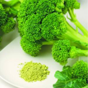 ダイエット、栄養補給に「野菜粉末 ブロッコリーファインパウダー 1kg入り」【無添加・無着色】