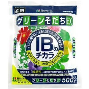 IBのチカラ グリーンそだちEX 500g − 花ごころ|nadja