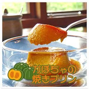 かぼちゃの手作り焼きプリン 6個入 − どん・るーかす|nadja
