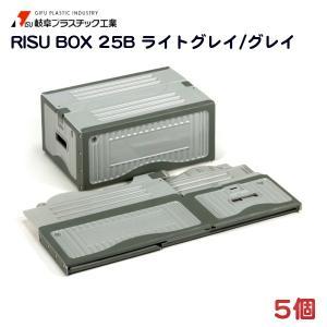 リスボックス 25B (455×322×206mm) 5個 − 岐阜プラスチック|nadja