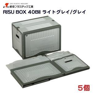 リスボックス 40BII (455×324×310mm) 5個 − 岐阜プラスチック|nadja