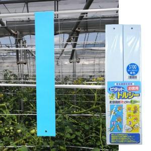 害虫捕獲粘着紙 ビタット トルシーS 青(50×350mm) 100枚入 − 一色本店|nadja