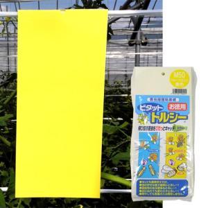 害虫捕獲粘着紙 ビタット トルシーM 黄(100×230mm) 50枚入 − 一色本店|nadja