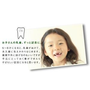 乳歯ケース たまごの乳歯入れ 人気  /翌々営業日出荷|nafudaya|05