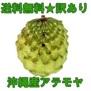 訳あり お試し 沖縄産アテモヤ1パック 2個 送料無料...