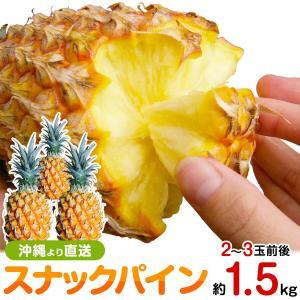 スナックパイン お試し1.5kgサイズ(2〜4個) 送料無料 沖縄産パイナップル 父の日 ギフト 得トク2WEEKS0318