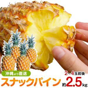 スナックパイン2.5kgサイズ(2〜4個) 送料無料 沖縄産パイナップル 父の日 ギフト