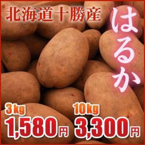 はるか3kg(北海道十勝産)〜2016年産新じゃが