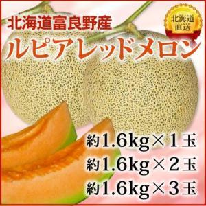 北海道富良野産!ルピアレッドメロン(大サイズ約1.6kg×3玉)【7月中旬頃〜発送】 nagahara-shopping