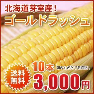 北海道芽室産!極甘とうもろこし(ゴールドラッシュ)2L×10本(約4kg)【送料無料!2015年8月中旬頃発送!】 nagahara-shopping