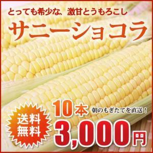 北海道芽室産!希少とうもろこし(サニーショコラ)2L×10本(約4kg)【送料無料!2015年8月中旬頃発送!】 nagahara-shopping