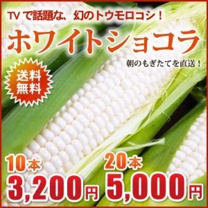 北海道産!幻のとうもろこし(ホワイトショコラ)2L×10本(約4kg)【送料無料!9月収穫でき次第、順次ご発送!】 nagahara-shopping