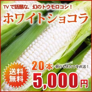 北海道産!幻のとうもろこし(ホワイトショコラ)2L×20本(約8kg)【送料無料!9月収穫でき次第、順次ご発送!】 nagahara-shopping