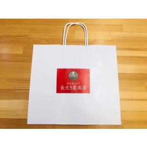 手提げ紙袋|nagaikiya88