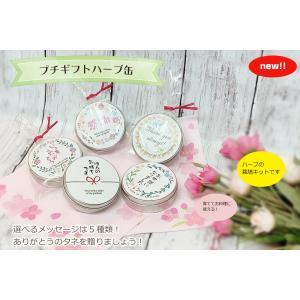 プチギフトハーブ缶|nagakura-store