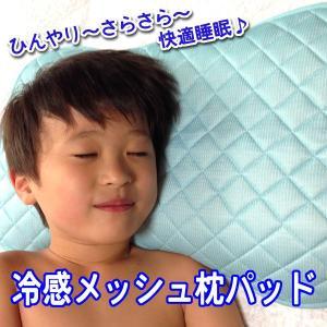 冷感メッシュ枕パッド 43X63cm (ブルー)(大) ひんやり(2pad-4)定形外可|nagamineshouten