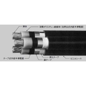 CVT100SQ(6600V)|nagamono-taroto
