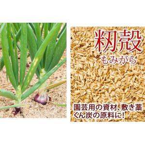 高品質な籾殻もみがら家庭菜園、土壌改良、ハウス栽培に4袋・ 約75リットル入り×4袋 送料無料  もみがら モミ殻