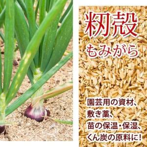 高品質な籾殻もみがら家庭菜園、土壌改良、ハウス栽培に 1袋約75L 1,480円 送料無料 もみがら モミ殻 籾殻