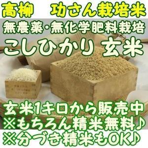 新米 『無農薬 こしひかり』1キロ玄米 千葉県成田市『おかげさま農場産』|nagashimastore7