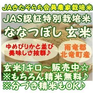 特別栽培米『ななつぼし』 5キロ玄米 『雨竜郡北竜町産』 JAS規格取得米|nagashimastore7