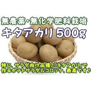 千葉県成田市の無農薬栽培グループ『おかげさま農場』より、会員農家さんが手塩にかけて育てた『無農薬 じ...