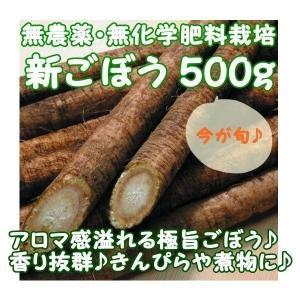 千葉県成田市の無農薬栽培グループ『おかげさま農場』より、会員農家さんが手塩にかけて育てた『無農薬 ご...