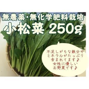 【商品のご案内】  千葉県成田市の無農薬栽培グループ『おかげさま農場』より、会員農家さんが手塩にかけ...