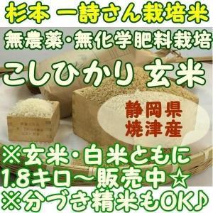 無農薬無化学肥料栽培 こしひかり 玄米・白米 1.8キロ(1...