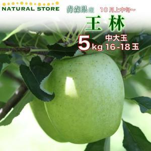 送料無料♪ 王林 16玉〜18玉(中大玉) 5キロ箱 りんご 青森県産ほか|nagashimastore7