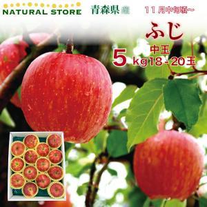 送料無料♪ ふじ 18玉(中大玉) 5キロ箱 りんご 青森県産|nagashimastore7