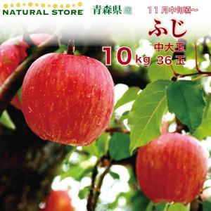 ふじ 36玉 (中大玉) 10キロ箱 りんご 青森県産|nagashimastore7