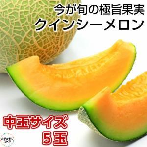 クインシーメロン 5玉箱 赤肉 2Lサイズ中玉 茨城県産ほか nagashimastore7