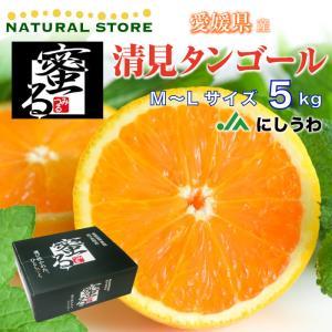 清見オレンジ 清見タンゴール 清見 きよみ 蜜る みつる M L 5kg 愛媛 西宇和 JAにしうわ...