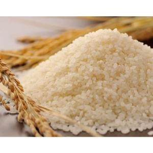 ポイント5倍セール 特別栽培米  彩のかがやき  30キロ ...