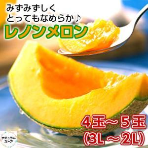 レノンメロン 2L 3Lサイズ 4玉 5玉正箱 赤肉 ギフト ご贈答用 残暑見舞い 青森県産 nagashimastore7