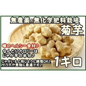 菊芋 1キロ  『無農薬・無化学肥料栽培』 埼玉県加須市 遠藤農園産ほか  菊芋 きくいも キクイモ 生 なま kikuimo