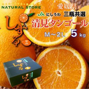 清見オレンジ 清見タンゴール 清見 きよみ しずる 雫る L〜2L 5kg 愛媛 西宇和 JAにしう...