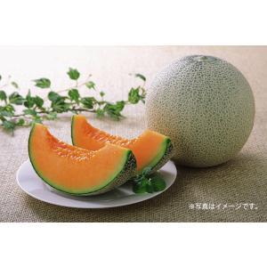 クインシーメロン 大玉サイズ 2玉化粧箱 赤肉 茨城県産ほか nagashimastore7