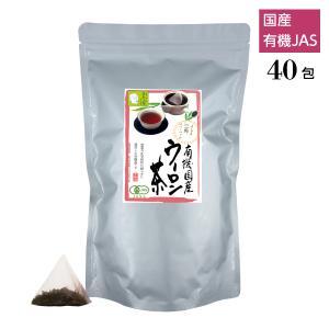 有機茶 烏龍茶 ティーバッグ 業務用 3g×40包 国産 日常使い nagata-chaen
