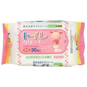 ミントの香りのトイレクリーナー30枚入りx100パック ペーパーテック|nagomishop