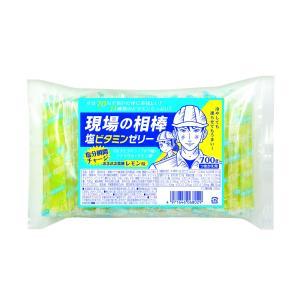 現場の相棒 塩ビタミンゼリー 詰替え用|nagonozakka