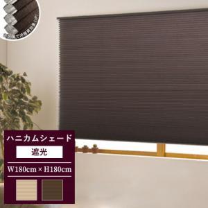 プリーツスクリーン ハニカムシェード 無地 遮光 調光 規格品 彩 幅180×高さ180cm