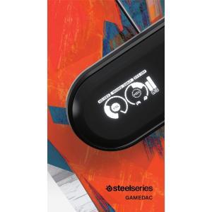 国内正規品PC PS4対応 サラウンド ゲーミング オーディオ USBDAC アンプ SteelSe...