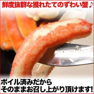 送料無料 お徳用 ボイル姿 ズワイガニ 約700g×2尾セット 脚折れ (ずわい蟹 割引 わけあり グルメ 鍋 ギフト ズワイ) グルメ zuwai2bi nakagawa-k-ichiba 04