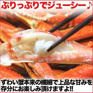 送料無料 お徳用 ボイル姿 ズワイガニ 約700g×2尾セット 脚折れ (ずわい蟹 割引 わけあり グルメ 鍋 ギフト ズワイ) グルメ zuwai2bi nakagawa-k-ichiba 05