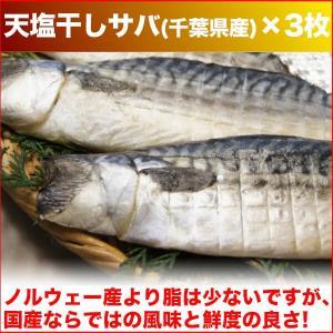 (干物 セット) 定番 焼き魚 3種セット 送料無料 アジ開き干・天塩干さば・甘塩銀鮭切り身 (海鮮 限定 ギフト)|nakagawa-k-ichiba|02