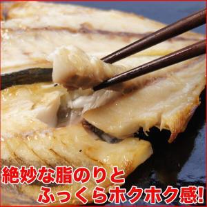 (干物 セット) 定番 焼き魚 3種セット 送料無料 アジ開き干・天塩干さば・甘塩銀鮭切り身 (海鮮 限定 ギフト)|nakagawa-k-ichiba|11