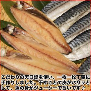 (干物 セット) 定番 焼き魚 3種セット 送料無料 アジ開き干・天塩干さば・甘塩銀鮭切り身 (海鮮 限定 ギフト)|nakagawa-k-ichiba|03