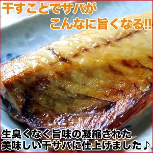 (干物 セット) 定番 焼き魚 3種セット 送料無料 アジ開き干・天塩干さば・甘塩銀鮭切り身 (海鮮 限定 ギフト)|nakagawa-k-ichiba|04